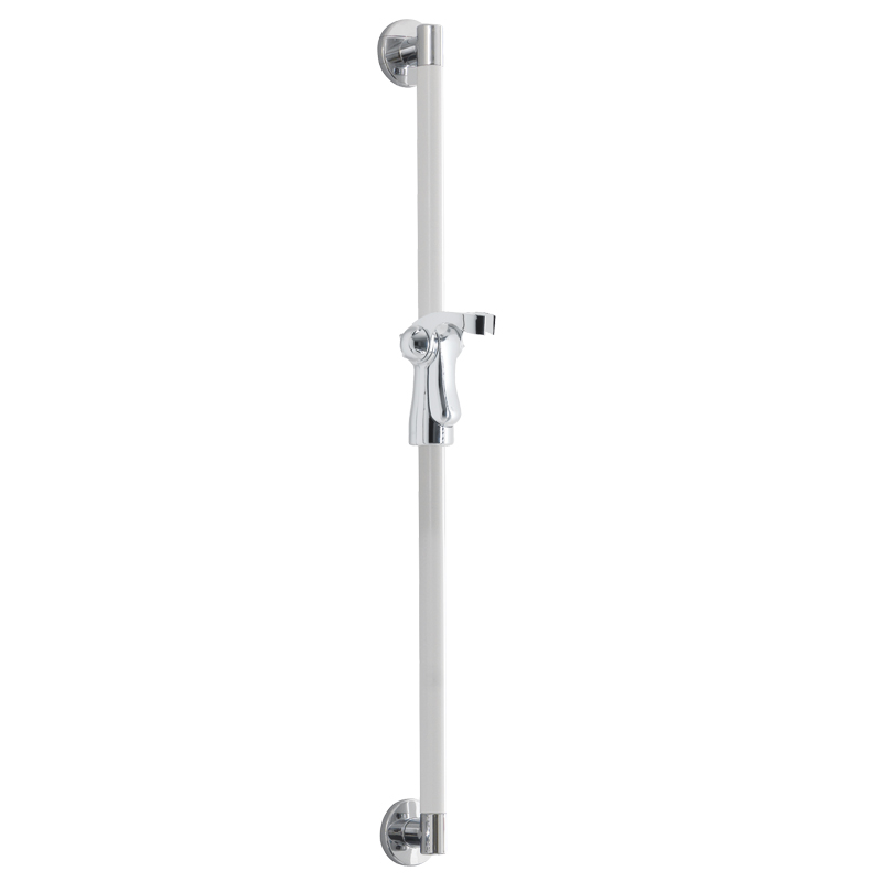 Vertical grab rail with shower head holder