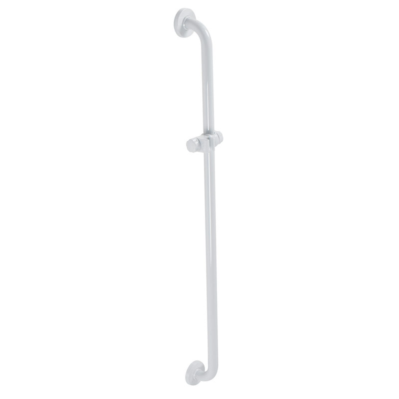 Safety grab bar with shower holder