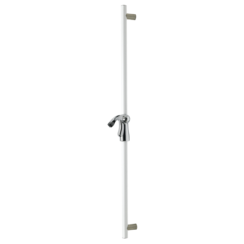 Vertical fixed slider grab rail including the showerhead holder